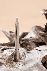 grasshopper driftwood